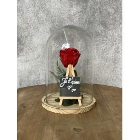 Grande rose éternelle, rouge •