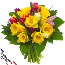 Bouquet Tulipes & Jonquilles