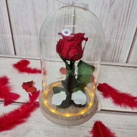 La Rose Eternelle ! Le cadeau de l'Amour Infini