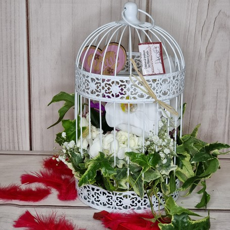 La Cage de Fleurs !